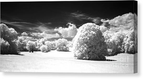 If  1 Canvas Print by Alan Russo