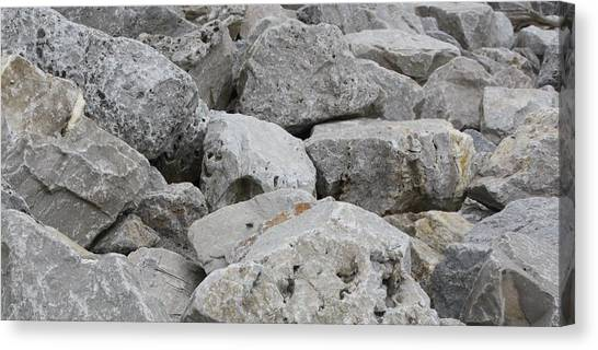 If Rocks Could Talk Canvas Print by Terry Scrivner
