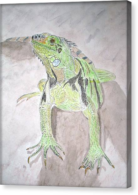 Canvas Print featuring the painting Iguana by Linda Feinberg