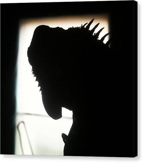 Iguanas Canvas Print - #iguana #shadow #sun #black #iggy by Theresa Kidd