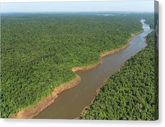 Iguazu Falls Canvas Print - Iguazu River by Alfred Pasieka