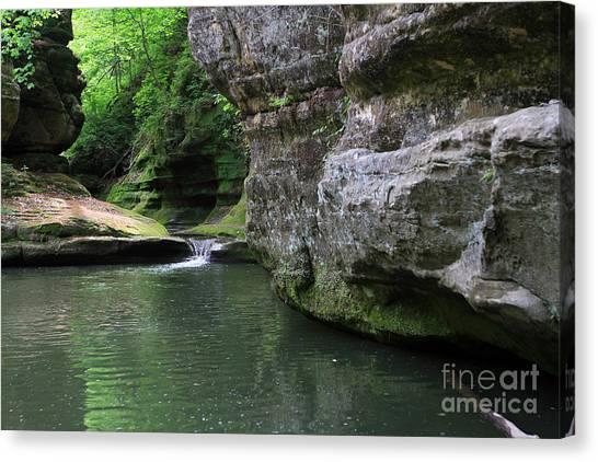 Illinois Canyon May 2014 Canvas Print