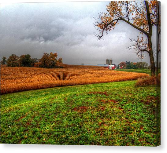 Illinois Farmland I Canvas Print