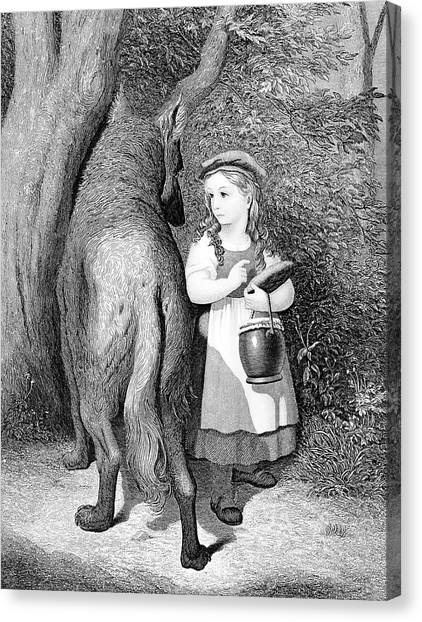 Sly Canvas Print - Illustration Of Little Red Riding Hood by Vintage Images