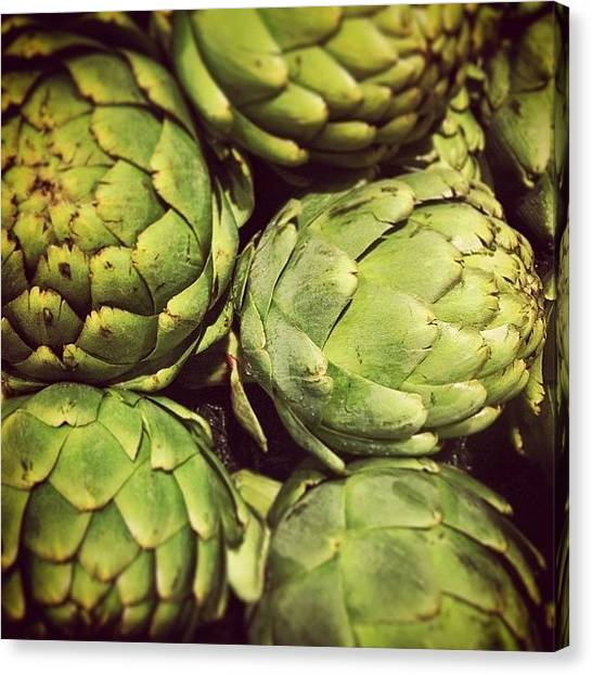 Artichoke Canvas Print - I'm Gonna Have A Feast Tonight!!! by Colleen Paige