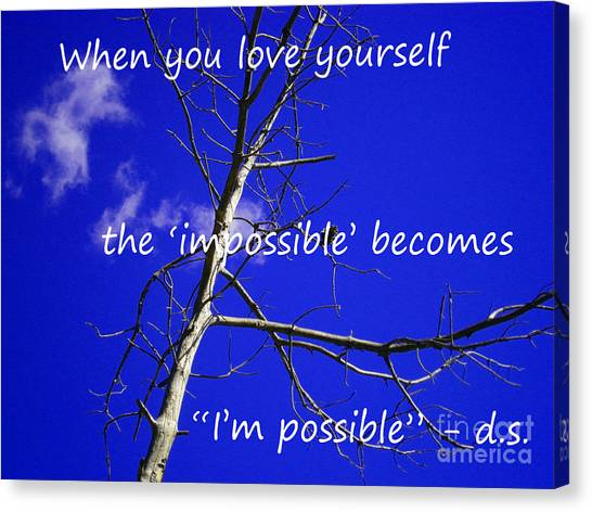 I'm Possible Canvas Print by Drew Shourd