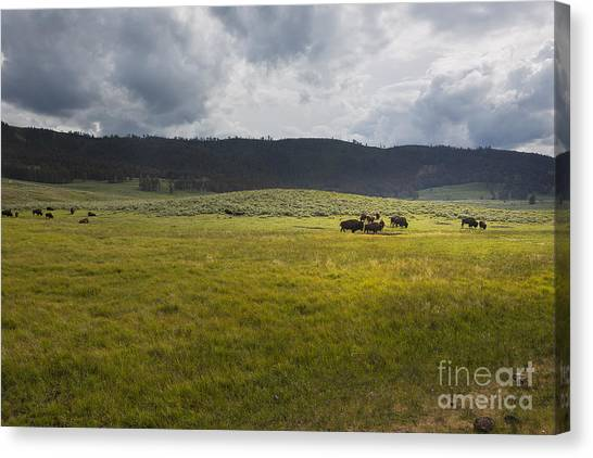 Canvas Print featuring the photograph Imagine by Belinda Greb