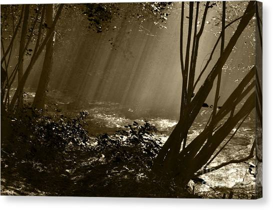 Imminent Apparition Canvas Print
