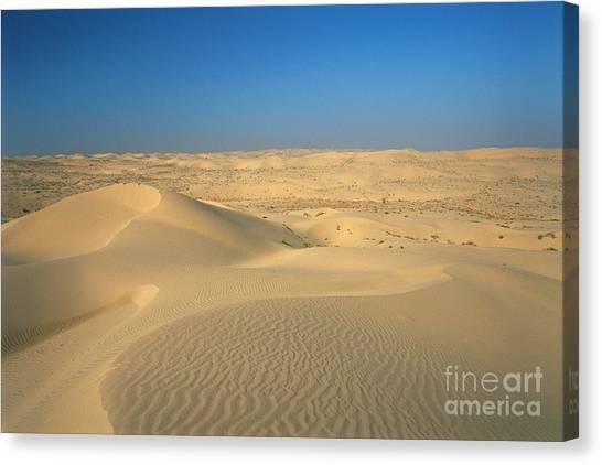Sandy Desert Canvas Print - Imperial Dunes, California by Mark Newman