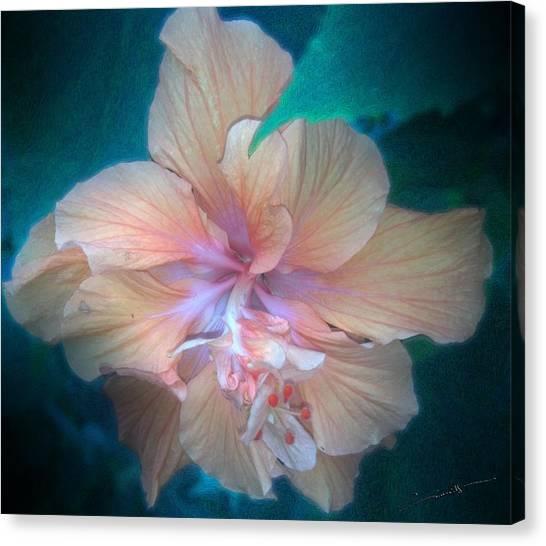 In A Butterfly Garden Canvas Print