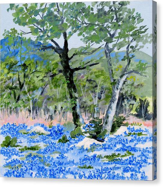 In April-texas Bluebonnets Canvas Print