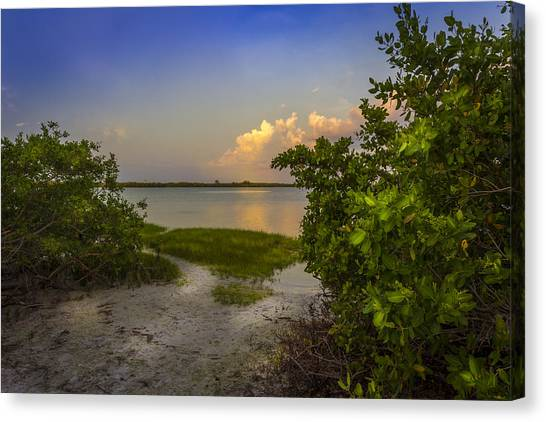 Tampa Bay Rays Canvas Print - In Coming Tide by Marvin Spates