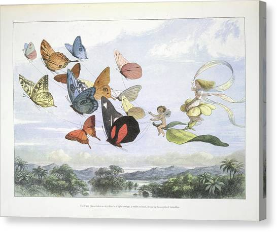 Mythological Creatures Canvas Print - In Fairy Land by British Library
