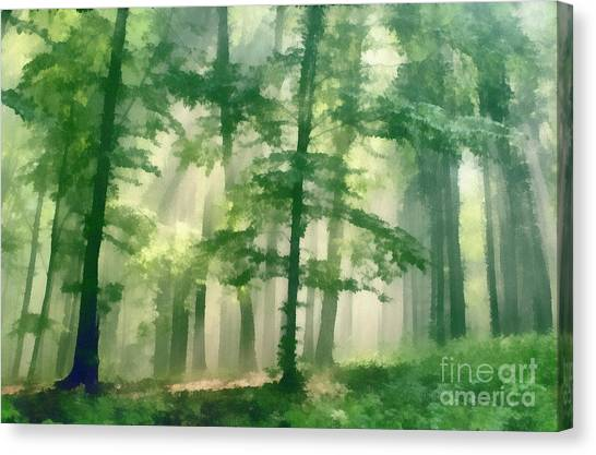 In Forest Canvas Print by Odon Czintos