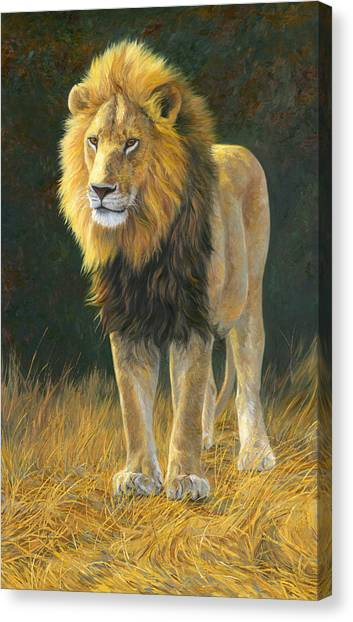 Lions Canvas Print - In His Prime by Lucie Bilodeau
