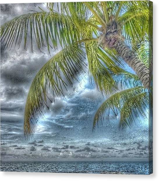 Tropical Fish Canvas Print - Smather's Beach Key West by Capt  Pat  Moran