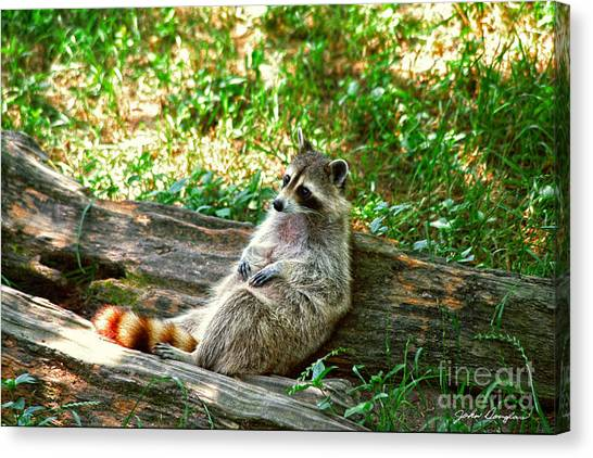 In Repose Canvas Print
