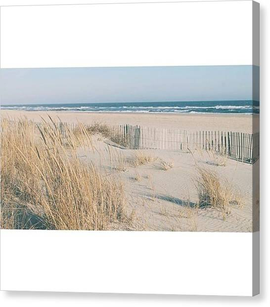 Seagrass Canvas Print - in The Depth Of Winter, I Finally by Josh Kinney