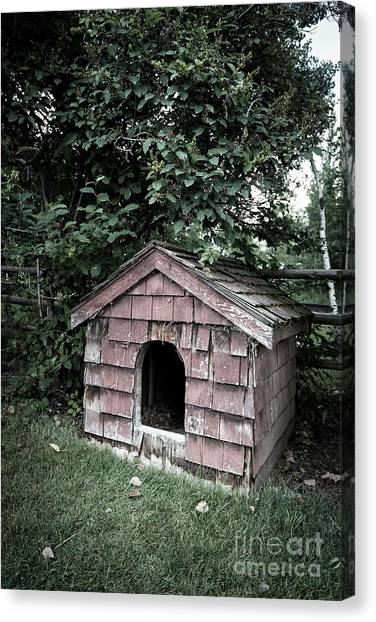 Shingles Canvas Print - In The Dog House by Edward Fielding