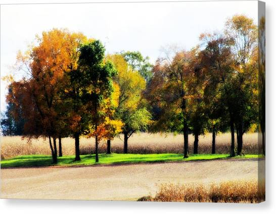 In The Field Canvas Print by Andrea Dale
