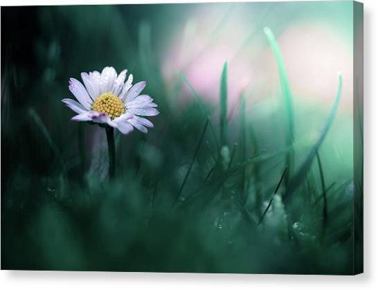 Summer Flowers Canvas Print - In The Garden Of My Heart by Maxime Dugenet