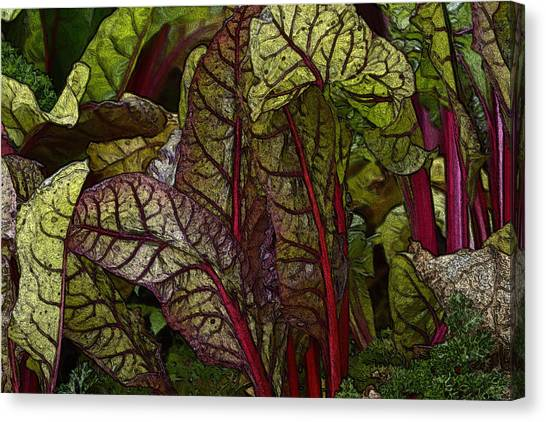 In The Garden - Red Chard Jungle Canvas Print