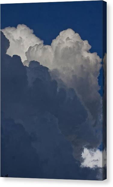In  The Middle Canvas Print by Michael Murphy