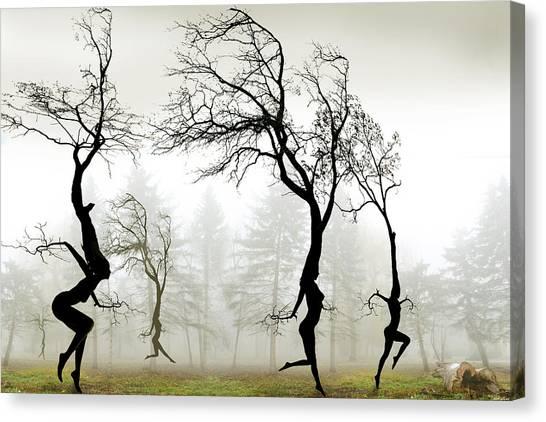 In The Mist Canvas Print by Igor Zenin
