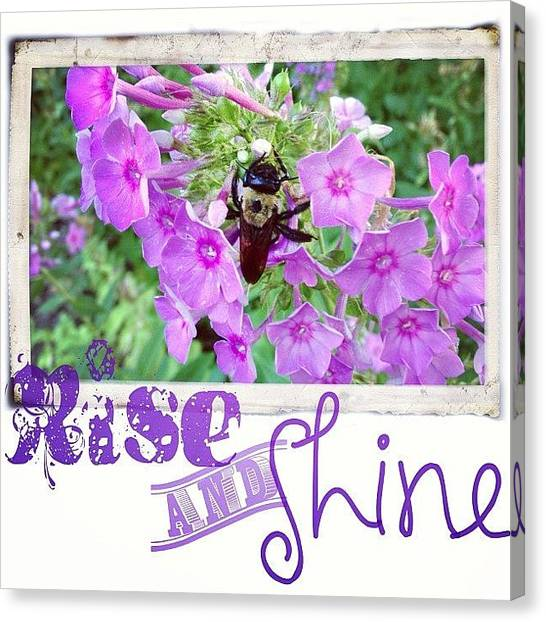 Purple Canvas Print - In The Morning There Are Several Bees by Teresa Mucha