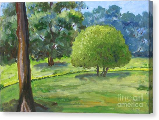 In The Park Canvas Print