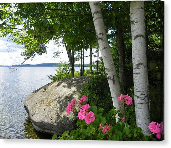 In The Shade Of The Birches Canvas Print