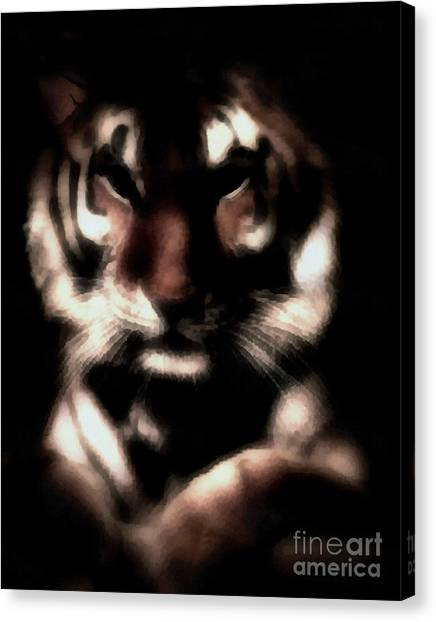 In The Shadows Of Night Canvas Print