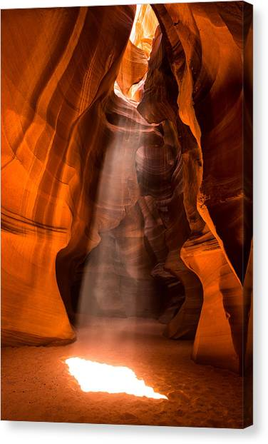 Canvas Print featuring the photograph In The Spotlight by Brad Brizek