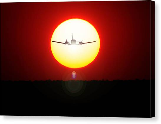 Canvas Print featuring the photograph In The Sun by Paul Job