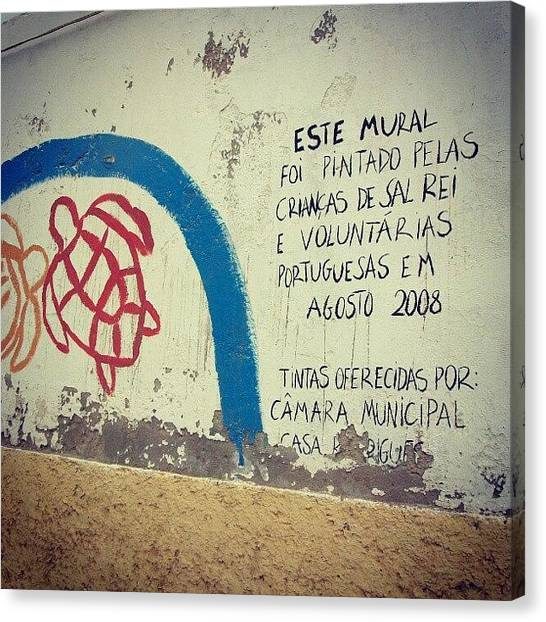Turtles Canvas Print - In The Wall At Sal Rei, Boa Vista, Cape by Andrea Del Ponte