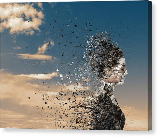 Dust Canvas Print - In The Wind by Silvia Guillet