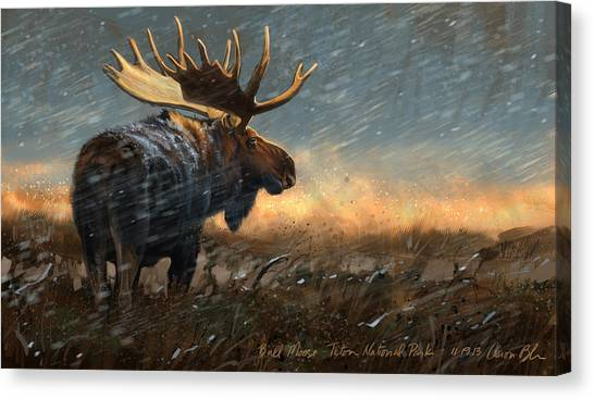 Moose Canvas Print - Incoming by Aaron Blaise
