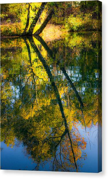Incredible Colors Canvas Print