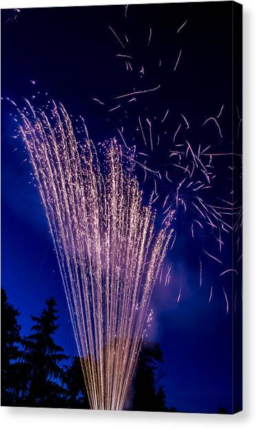 Independence Day 2014 17 Canvas Print