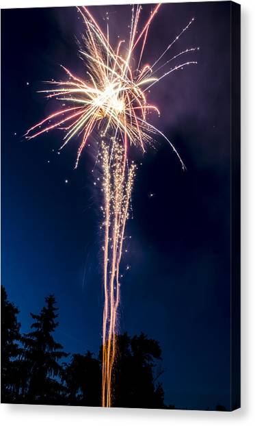 Independence Day 2014 7 Canvas Print