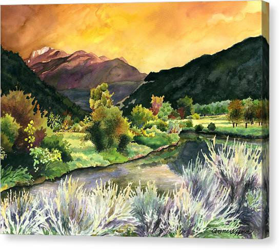 Colorado Canvas Print - Independence Pass by Anne Gifford