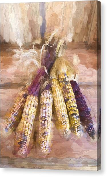 Indian Corn Canvas Print - Indian Corn Painterly Effect by Carol Leigh