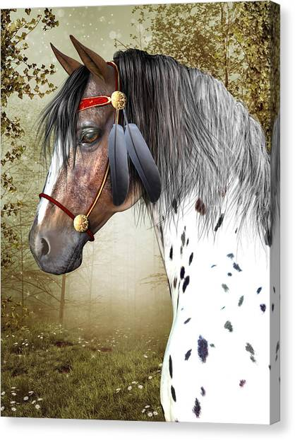 The Indian Pony Canvas Print