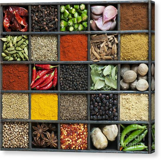 Mustard Canvas Print - Indian Spice Grid by Tim Gainey