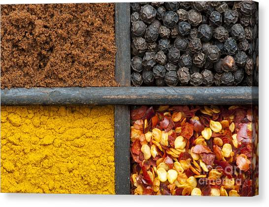 Indian Corn Canvas Print - Indian Spices Pattern by Tim Gainey