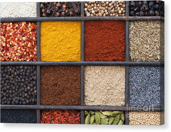 Indian Corn Canvas Print - Indian Spices by Tim Gainey