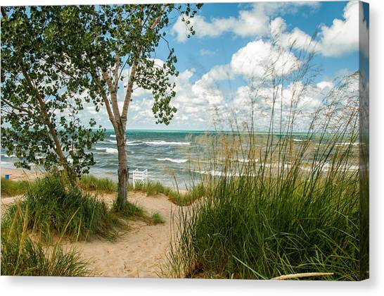 Indiana Sand Dunes State Park Canvas Print