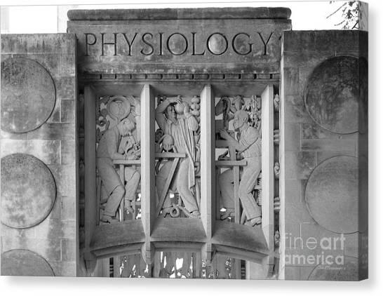 Indiana University Iu Canvas Print - Indiana University Myers Hall Physiology by University Icons