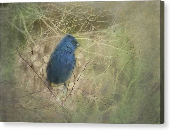 Buntings Canvas Print - Indigo Blue by Susan Capuano