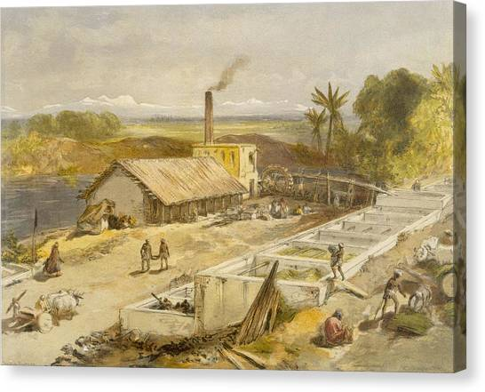 Dye Canvas Print - Indigo Factory - Bengal, From India by William 'Crimea' Simpson